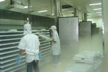 Thiết kế kho lạnh thủy sản như thế nào là an toàn (2)